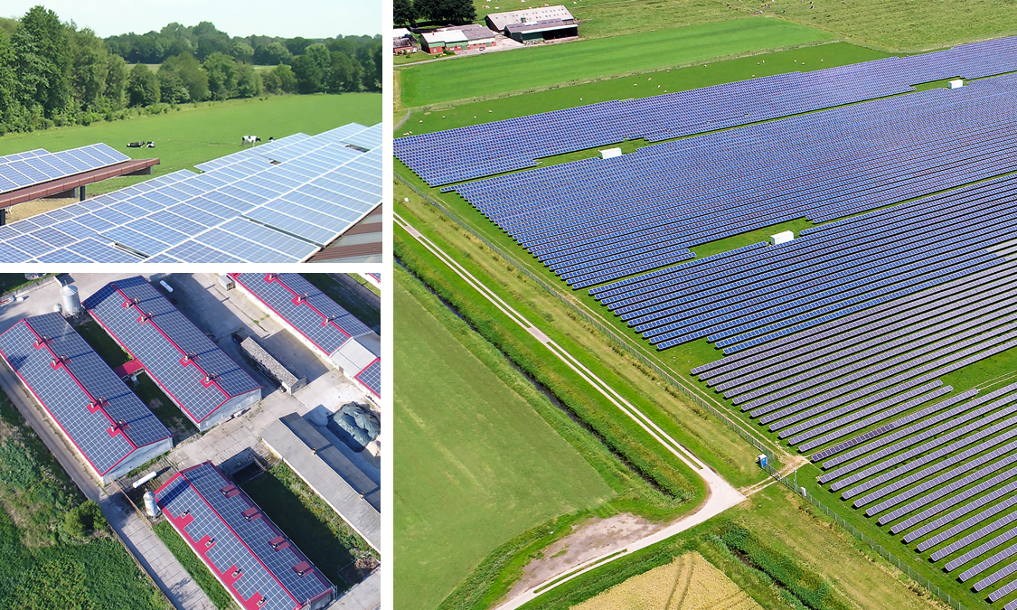 ensibo References Solar PV plants